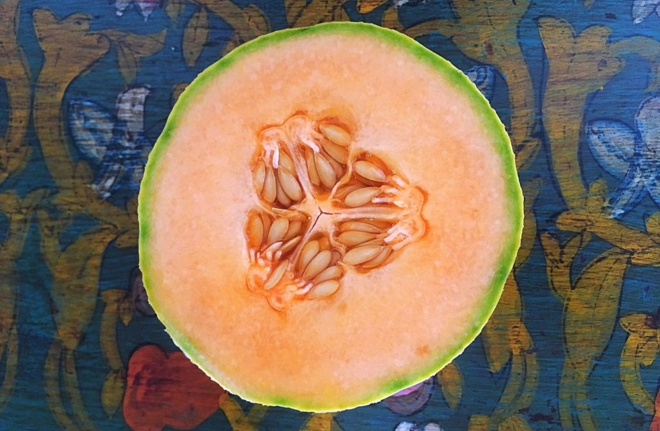 Plants Heal Blog Melons A Humble Yet Powerful Fruit #zucchini #melon #cantaloupe #prosciutto #italian food #italian cuisine #grilled zucchini #courgette #grilling #pine nuts #basil #meal want to see more posts tagged #cantaloupe? melons a humble yet powerful fruit